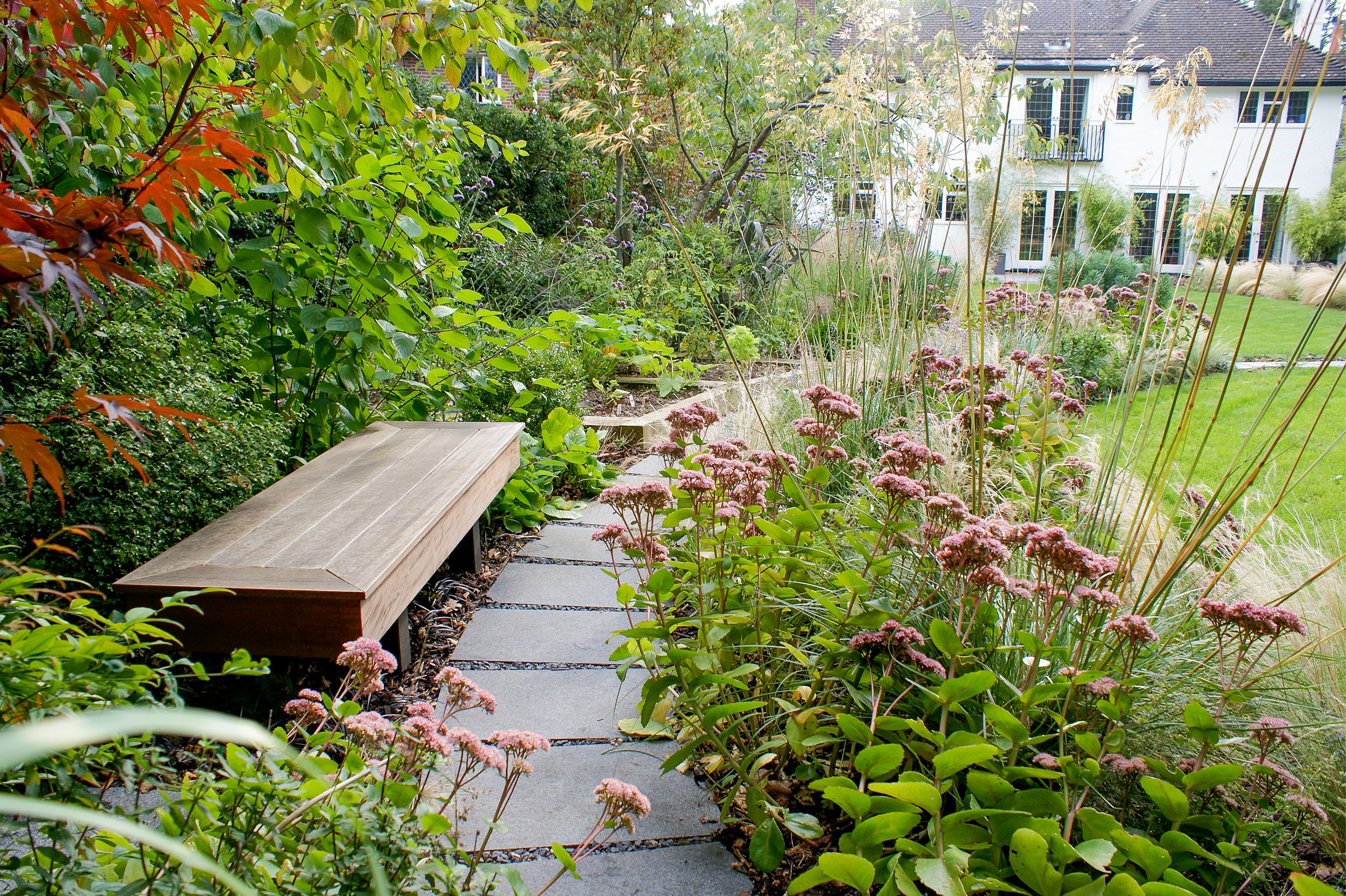 Family Garden, Harpenden | Rosemary Coldstream Garden Design