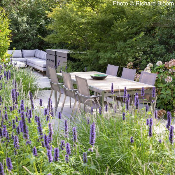 modern garden in Hampstead, London