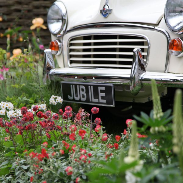 car and number plate at British Plant Nursery Guide Trade Stand, RHS Chelsea Flower Show
