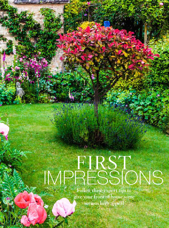 First Impression front cover
